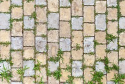 Green grass growing through the cobble stones, outdoor garden flooring background photo texture