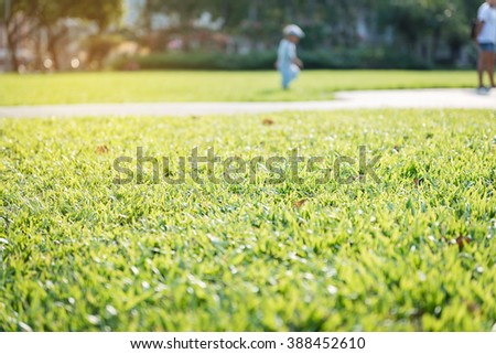 Green grass in garden with blurry kid walking background at Lumphini Park, Bangkok Thailand