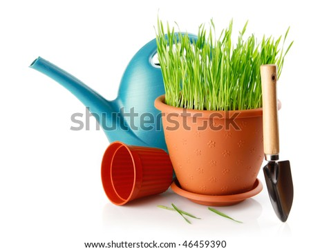 green grass in the pot with shovel tool isolated on white background