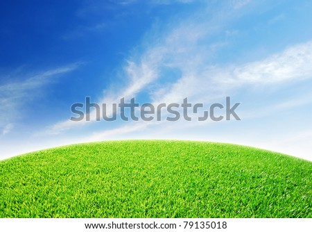 Green grass landscape blue sky for Backgrounds and design