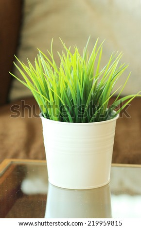 Green grass leaves in pot, put on table.