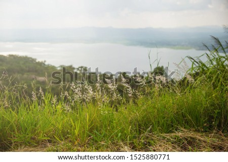 Green grass meadow on top of mountain edge. Enjoying nature sunset.Freedom.Enjoyment.Relaxing in mountains at sunrise.
