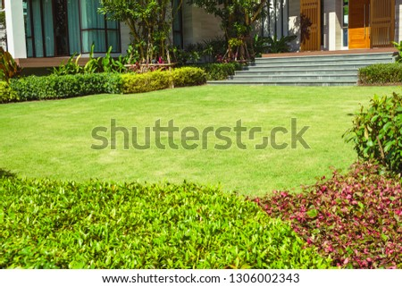 Green grass, Modern house with beautiful landscaped front yard, Lawn and garden blur background., The design concept for background.