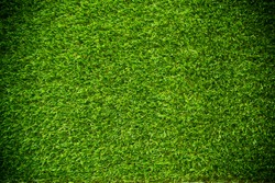 green grass natural background texture.