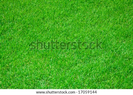 green grass of football stadium