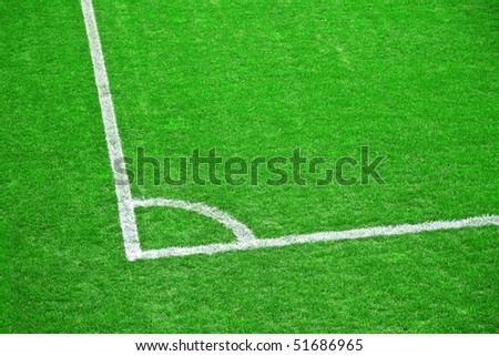 Green grass of the football (soccer) field