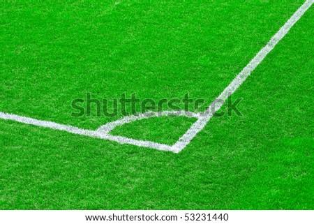 Green grass of the football (soccer) field