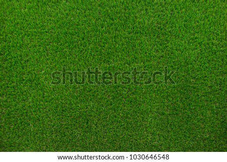 Green grass of the golf course background. - Shutterstock ID 1030646548