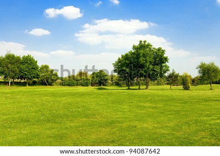 Green grass on a golf field Сток-фото ©