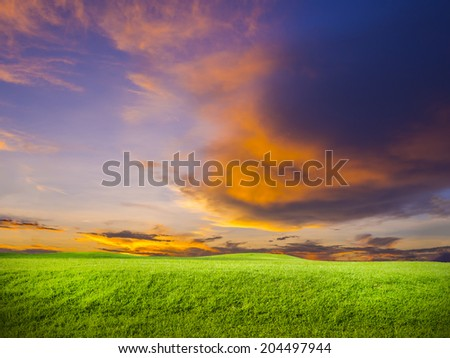 green grass on colorful sunset background #204497944