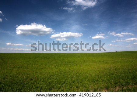 Green grass on meadow and sky. Beautiful nature landscape #419012185