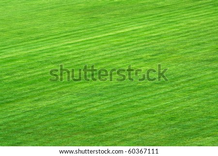 Green grass on playing field - stock photo