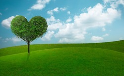 Green grass on slope with heart shape green tree under blue sky. Beauty nature. Good environment.
