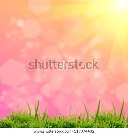green grass on the pink background