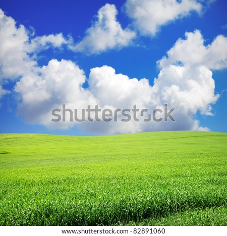 green grass over wonderful blue sky