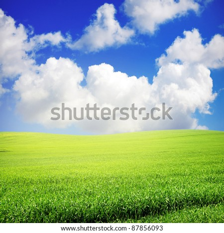 green grass over wonderful blue sky with sunlight