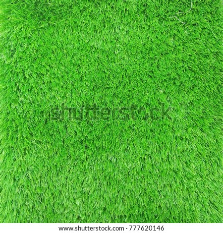 Green Grass plant background  - Shutterstock ID 777620146