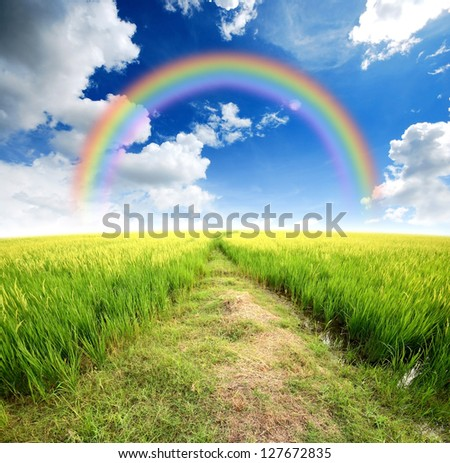 Field And Sky Background Sky Rainbow Background