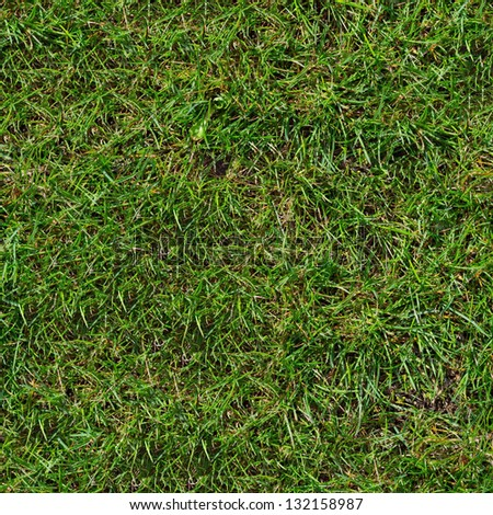 Green Grass. Seamless Tileable Texture.