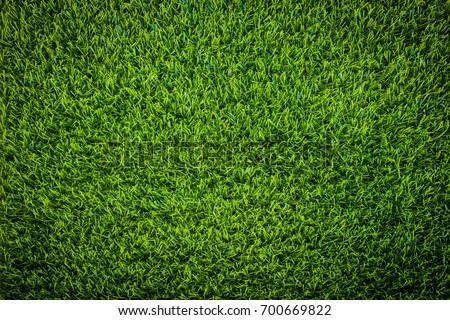 Green grass soccer field background. #700669822
