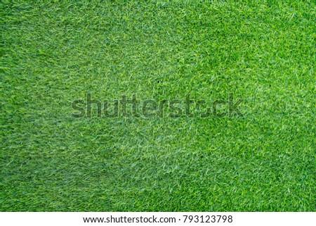 green grass texture - Shutterstock ID 793123798