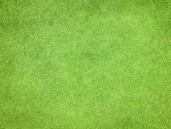 Green grass texture pattern background golf course turf from top view with authentic grassy lawn for environmental backdrop in yellow green