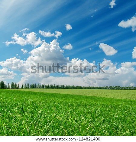green grass under cloudy blue sky