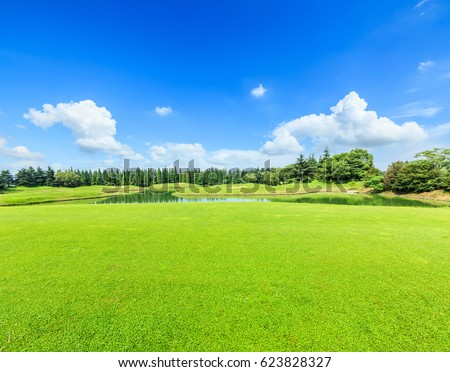 Stock Photo green grass under the blue sky