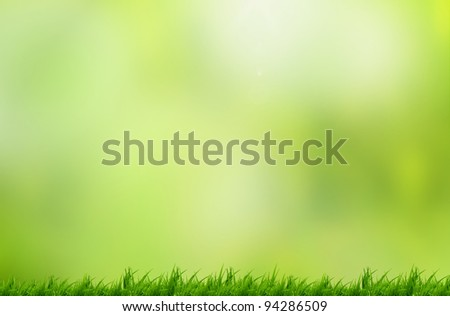Green grass with beautiful background