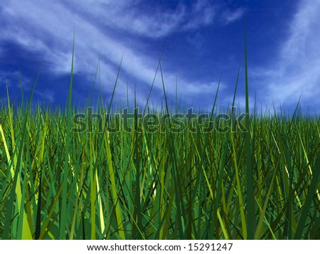 green grass with blue sky #15291247