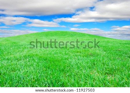 Green grass with blue sky and clouds - stock photo
