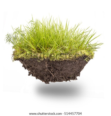 green grass with earth isolated ...