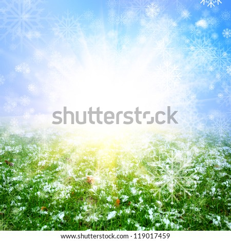 green grass with the snow