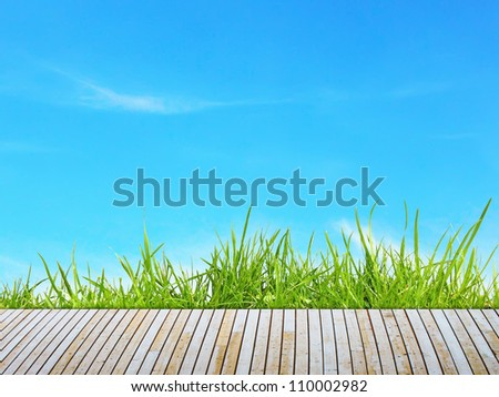 Green grass with wooden pier over blue sky