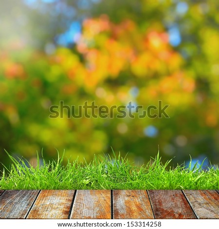 Green grass with wooden walkway on autumn background