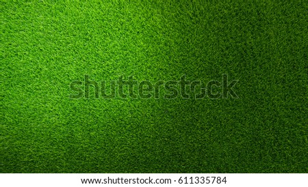 Green Grasses with shadow - Shutterstock ID 611335784