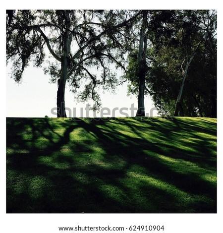 Green green grass #624910904