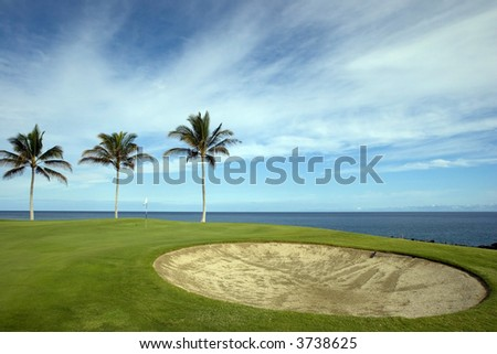 Hawaiian Golf