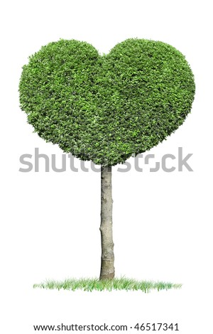 Green Heart Tree - stock photo