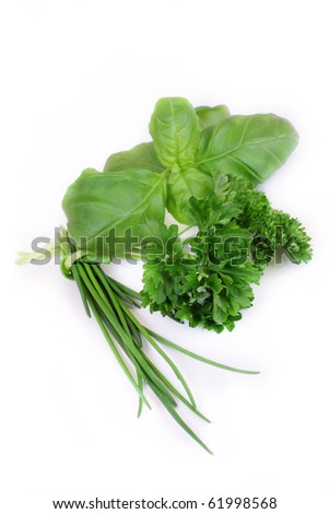 green herbs on white background