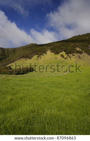 Green hill side in the East Cape region of the North island of New Zealand