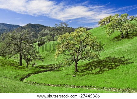Green hills and oak trees in California wine country.