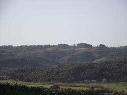 Green hills forest near a village