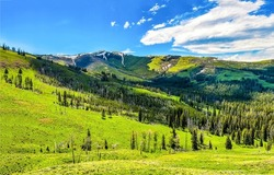 Green hills in the mountains in summer. Mountain landscape. Mountain hill valley landscape