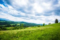 Green hillside in the village