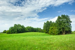 Green hilly meadow and trees, white clouds and blue sky. Staszyce, Poland