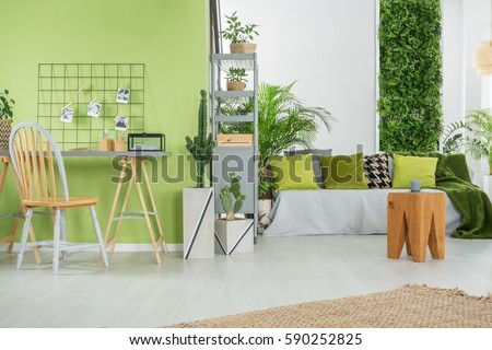 Green home interior with sofa, desk, chair and metal bookcase