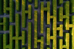 Green labyrinth in garden geometrical symmetry maze Aerial drone view