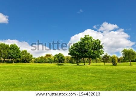 Green Landscape - Shutterstock ID 154432013