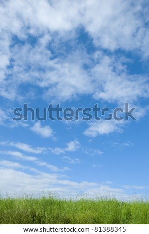 Green landscape with blue cloudy sky - stock photo